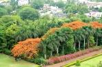 Bijapur, Karnataka, India