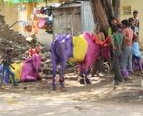 Bijapur, Colourful India