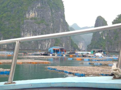 Fishing Village, Ha Long Bay